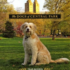 dogs-of-central-park